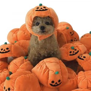 Cute Pet Halloween Pumpkin Hat